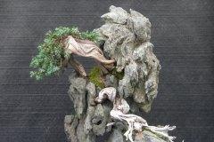 VSB-Ausstellung-Schinznach-2006-061